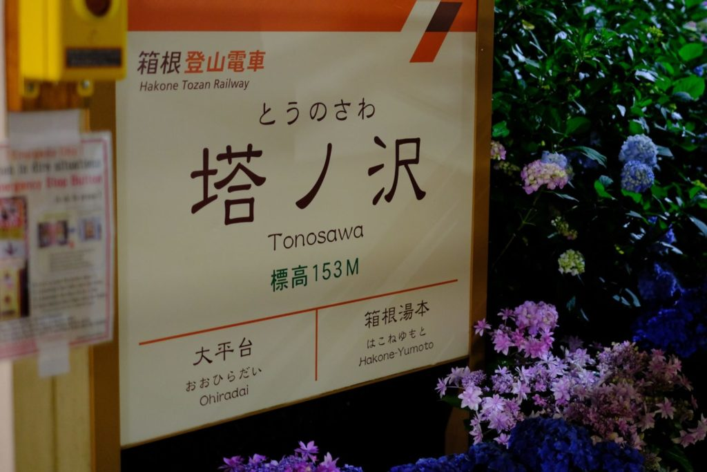 Night Hydrangea Tonosawa Station Home